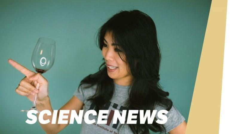 Betrunken besser in Fremdsprachen | SCIENCE NEWS 2