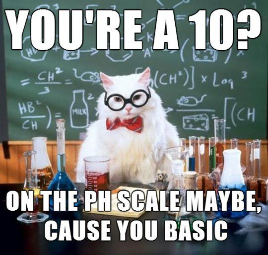 Science Cat Is Right And You Know It 1