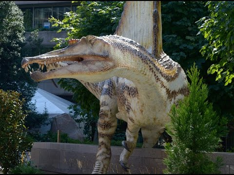 Dino suited for water makes a splash | Science News 1