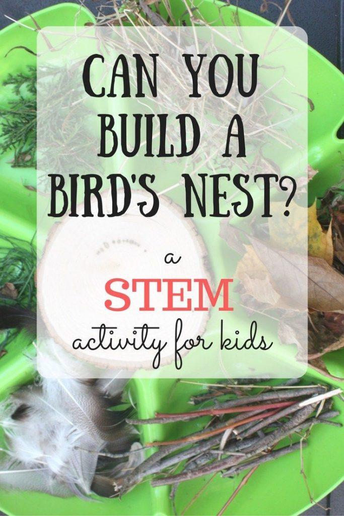 Can you build a nest? This STEM challenge for kids gets kids thinking creatively... 1