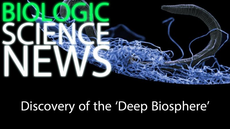 Science News - Discovery of the 'Deep Biosphere' 2