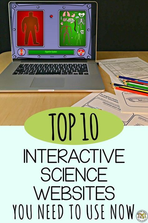 If you're looking for something fun to do while teaching science, here's our top... 1