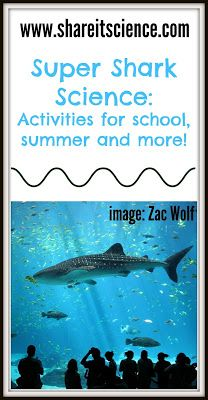 Share it! Science News : Psyched about Sharks?! Science activities for shark lov... 1