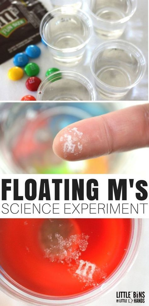The floating M candy science experiment is easy, quick, and pretty cool! We went... 1