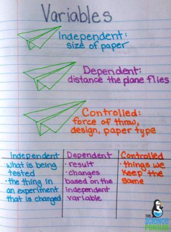 Science process skills anchor charts! 1