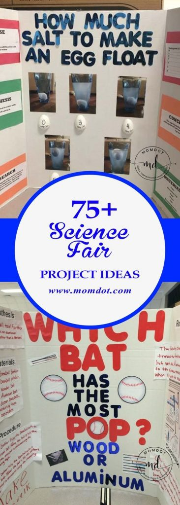 "The words ""Science Fair"" can strike fear in the heart of parents, but here are o... 1"