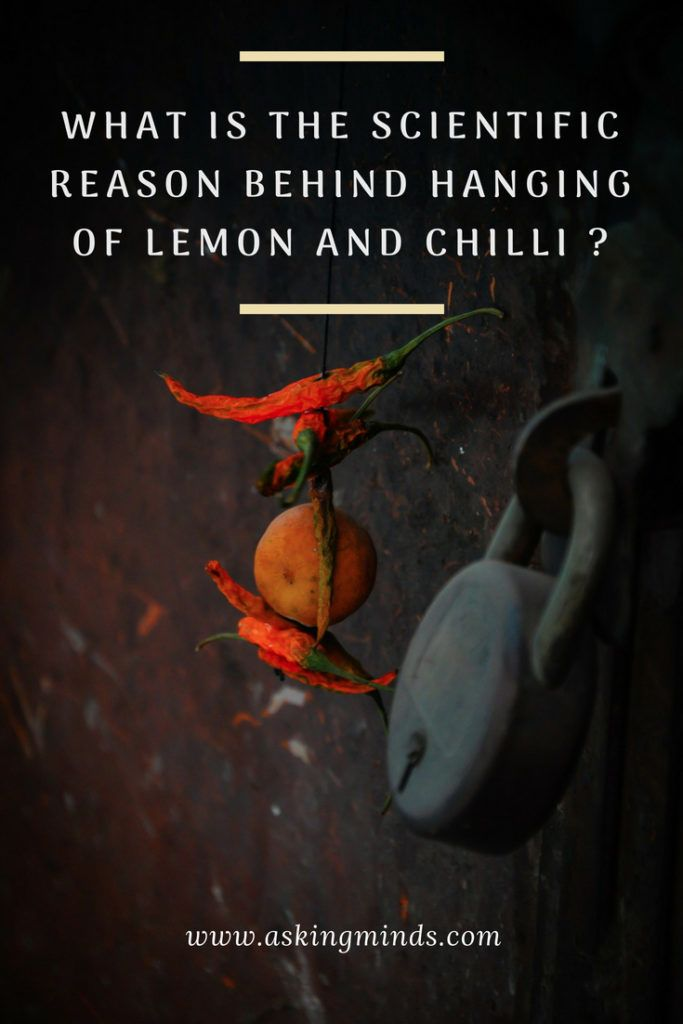 What is the scientific reason behind hanging of lemon and chilli? - science and ... 1