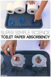 Simple Kids' Science Experiment. Test Toilet Paper Absorbency. 2