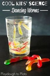20 Kids' Science Experiments You Can Do At Home. Fun for a back to school pa... 1