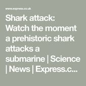 Shark attack: Watch the moment a prehistoric shark attacks a submarine | Science... 7