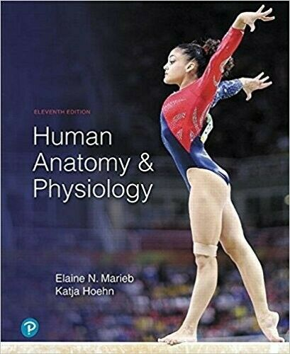 human anatomy and physiology 11th edition By Elain 5