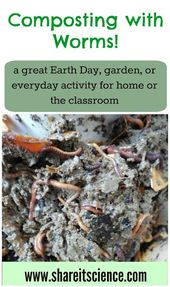 Composting with Worms! A Great Activity for School or Home 3