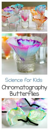 Science for Kids: Chromatography Butterfly Craft 1