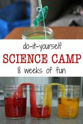 All You Need for a DIY Summer Science Camp 2