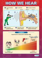 How We Hear | Science Educational School Posters 5