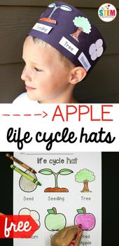 Apple Life Cycle Hat - The Stem Laboratory 1